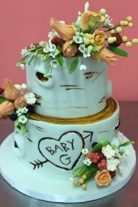 elysia-root-cakes-birch-tree-baby-shower-cake