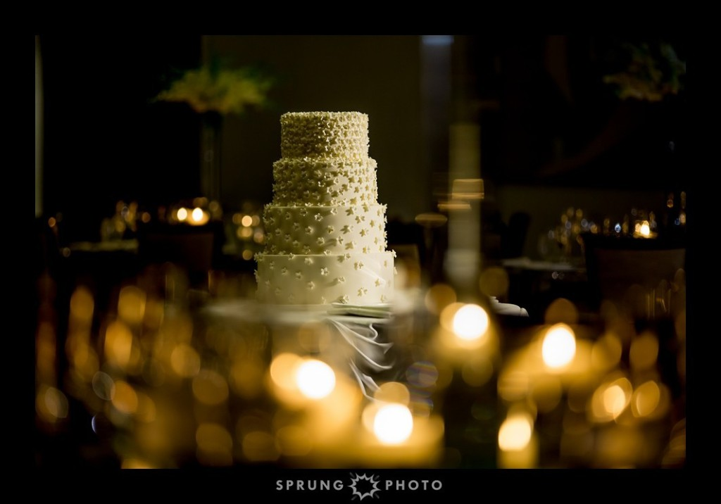 File246 (2)_Brooke_and_Raj_The_Langham_Hotel_Chicago_Illinois_Wedding_by_Sprung_Photo_Cascading_Hydrangeas